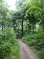 Wuppertal Nordpark 2014 124.JPG