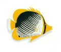 XRF-Chaetodon melannotus.png