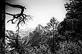 Yosemite (14359712118).jpg