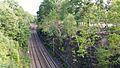 Złoty Pociąg, Golden Train Wałbrzych.jpg