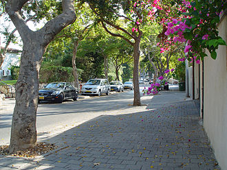 Tzahala - Street in Tzahala
