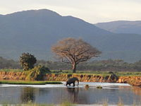 Mana-Pools-Nationalpark, Safarigebiete Sapi und Chewore
