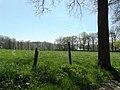 Zottegem Elene Hebbegem weilanden en dreven bij Kasteeldomein Leeuwergem - 225044 - onroerenderfgoed.jpg
