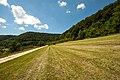 """""""unter dem Burz"""", Grasland 02.jpg"""
