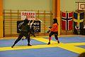 Örebro Open 2015 96.jpg