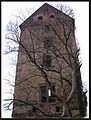 Świny zamek (28) Świny zamek. Foto Barbara Maliszewska.JPG