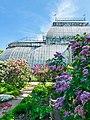 Ботанический сад ботанического института им. В.Л. Комарова РАН.jpg
