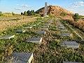 Братское кладбище у кургана - panoramio.jpg