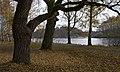 В парке - panoramio (1).jpg