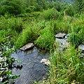 Долина реки Сим, Башкортостан - panoramio (2).jpg