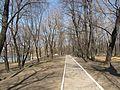 Лефортово - panoramio - Павел Котов.jpg