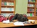 МИФИ. Библиотека главного корпуса. Сентябрь 2005.jpg