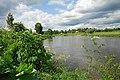 Москва-река под Звенигородом - panoramio - Дмитрий Мозжухин (1).jpg