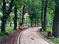 Місця для відпочинку (Маріїнський парк).jpg