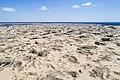 Олешківські піски DJI 0006.jpg