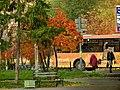 Осень - panoramio (26).jpg