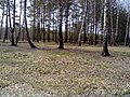 Полянка - panoramio (2).jpg