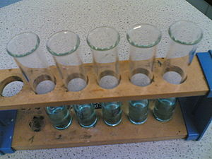 5 test tubes with different concentrations of ...