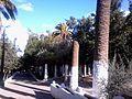 حديقة عامة بعين تموشنت.jpg