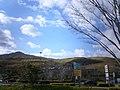 別府湾SA - panoramio.jpg