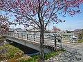 大柳橋 2011.4.17 - panoramio.jpg