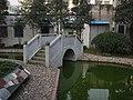 娄桥医院里的小桥流水 - panoramio.jpg