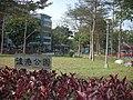 後港公園 - panoramio.jpg