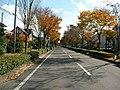 明石台の11月 - panoramio.jpg