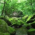 海沢-三ツ釜の滝-02 - panoramio.jpg