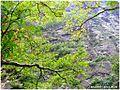 莲花山 - panoramio (6).jpg
