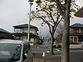 西側の植樹 - panoramio.jpg