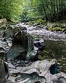 -30 Naturschutzgebiete in Thüringen Schwarzatal 159.jpg
