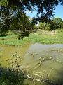 07920jfPampanga River banks Candelaria Welcome Calumpit Bulacan Roadsfvf 10.JPG