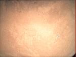 09-357.15.07 VMC Img No 12 (8268406643).png
