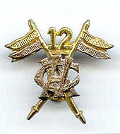 12th Cavalry (FF) badge.jpg