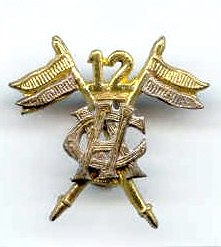 12th Cavalry (FF) badge