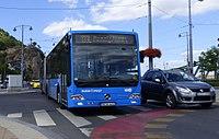 133E busz (NCA-442).jpg