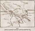 1467 - Batalia de la Baia Rosetti arta 179.png