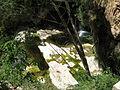 149 Gorg sota el salt d'aigua del Tenes, Sant Miquel del Fai.JPG