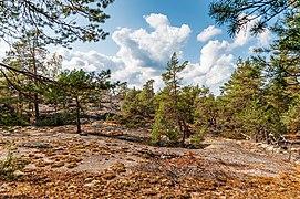 18-09-01-Schären westlich von Långbådan RRK7803.jpg