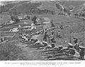 1905polurota.jpg