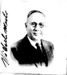 Mike Merlo Wikipedia