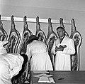 1958 visite d'une délégation INRA au Haras du Pin Cliché Jean Joseph Weber-37.jpg
