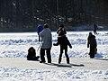 2012 'Seegfrörni' - Türlersee - Hausen am Albis 2012-02-18 12-43-32 (SX230).jpg