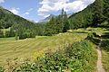 2013-08-06 13-30-51 Switzerland Kanton Graubünden Poschiavo Val di Campo.JPG