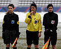 20130120 - PSG-Toulouse - 030 - cropped.jpg