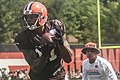 2016 Cleveland Browns Training Camp (28407680100).jpg