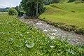 2017-06-21 10-26-48 895.0 Switzerland Kanton St. Gallen Unterwasser Alt St. Johann.jpg