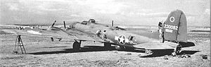 Ain M'lila Airfield - 20th Bombardment Squadron Boeing B-17F-85-BO Fortress 42-30082 being serviced at Ain M'lila Airfield, Algeria