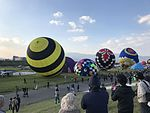 22nd FAI World Hot Air Balloon Championship 20161103-23.jpg